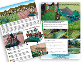 Flyer Design Romsey Hampshire