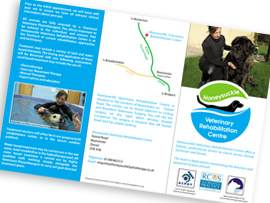 Brochure & Flyer design beaminster